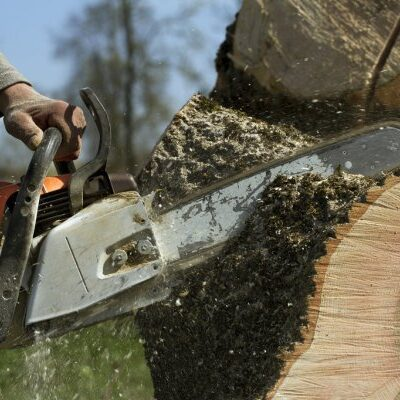 Man cutting tree trunk with chainsaw